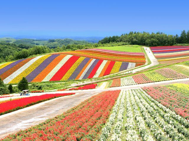 自然の色を感じる 北海道